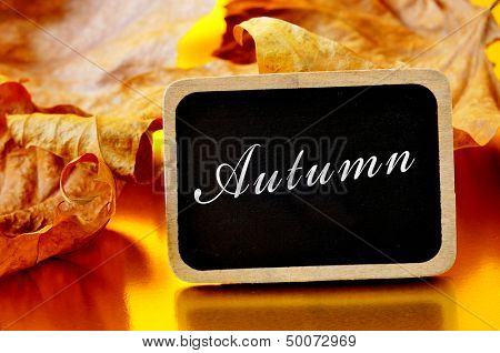 a pile of dried leaves and the word autumn written on a small wooden blackboard