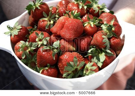Strawberries_served