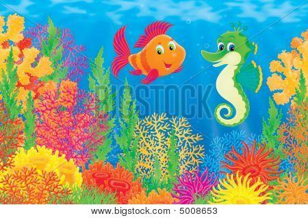 Korallenfische und Seepferdchen