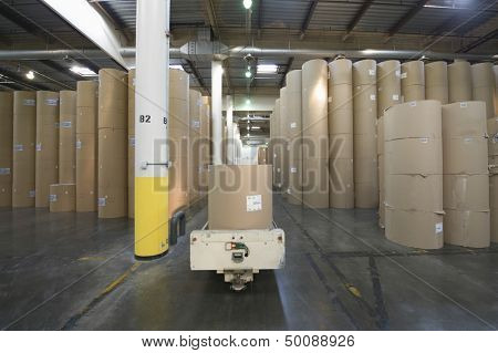 View of huge rolls of paper in spacious newspaper factory
