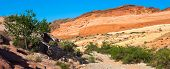 Valley Of Fire Desert