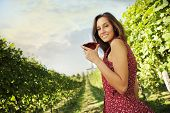 stock photo of merlot  - Beautiful woman in vineyard with a glass of red wine - JPG