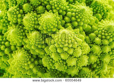 Beautiful Closeup Background Of Romanesco Spiral Broccoli