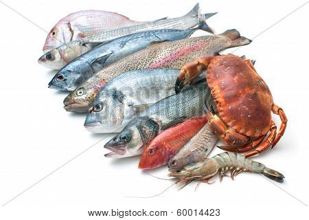 Seafood Isolated On White Background