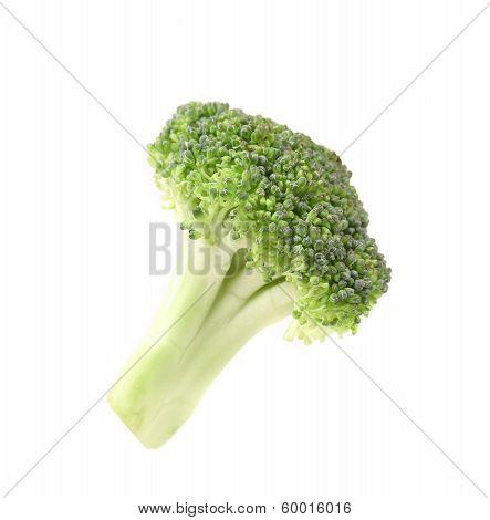 Close up of fresh broccoli