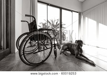 Empty Wheelchair
