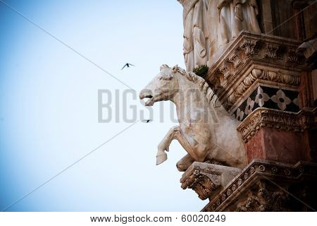 Horse Statue In Siena