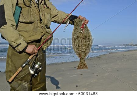 Fly Fisherman and Halibut