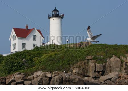 Cape Neddick Lighthouse I