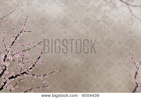 Ornamental elegant cherry tree on rough background with place for text or image