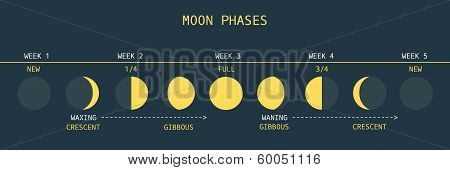 Moon Phases Northern Hemisphere