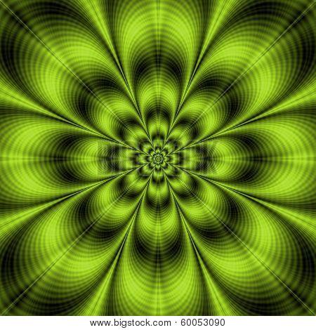 Lime Green Flower