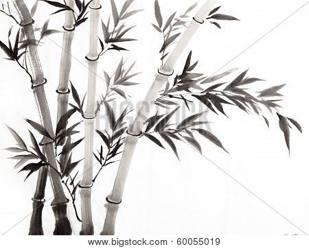 Traditional Chinese Painting ,bamboo