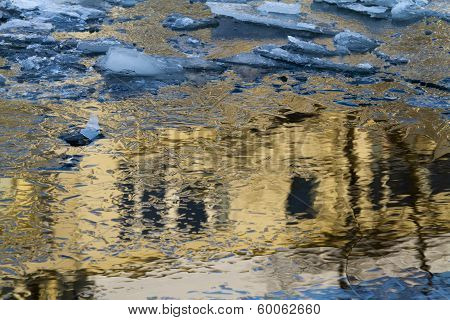 Ice Floes Golden Reflection