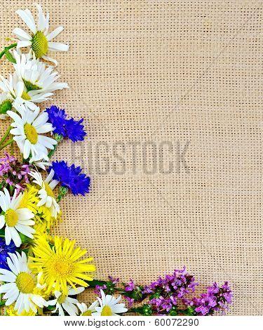 Frame Of Wild Flowers On Sacking