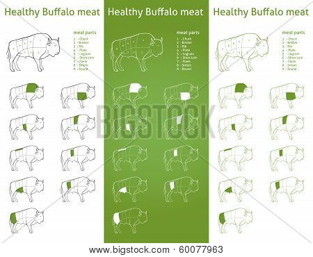 HEALTHY BISON meat parts set
