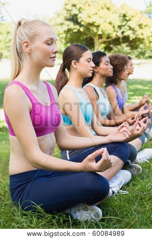 Women sitting in lotus position during yoga training at park
