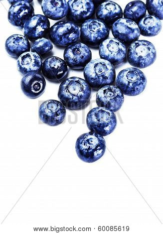 Fresh Blueberries Isolated On White Background Close Up. Blueberry Antioxidant Superfood Isolated On