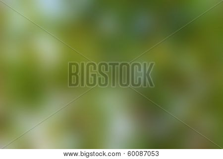 Abstract Background blur green color