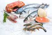 image of saltwater fish  - Seafood on ice at the fish market - JPG