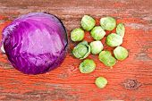 image of cruciferous  - Overhead view of healthy fresh cleaned purple radicchio and brussels sprouts both cruciferous plants of the Brassica family on a rustic grunge wooden board