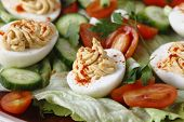 image of scallion  - Homemade deviled eggs served on a salad of miniature tomatoes - JPG