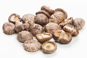 Shiitake Mushrooms