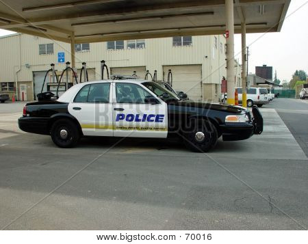 POLICE CAR IN YARD