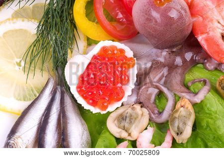 Raw squid with vegetables and red caviar on the white background