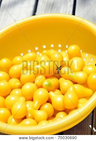 Yellow Cherry Tomatoes.
