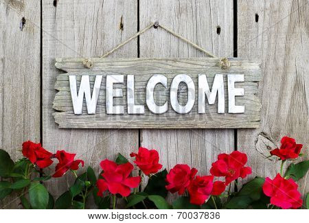 Flower border of red roses by wood welcome sign hanging on wooden fence