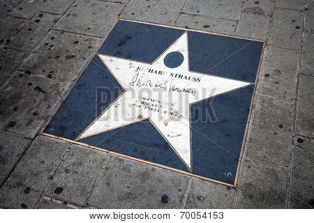 Richard Strauss Walk Of Fame Star In Vienna