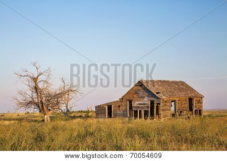 old abandoned homestead with hawk nests on eastern Colorado prairie near Galeton in sunset light