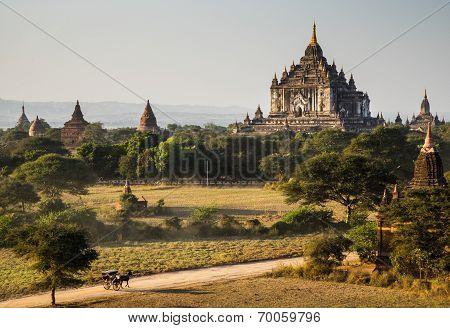 The Horse Car In The Plain Of Bagan At Sunset, Bagan, Myanmar