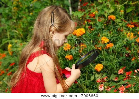 Little girl in red dress considers flower through magnifying glass.
