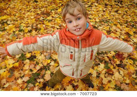 Portrait of boy in autumn park against fallen down leaves.