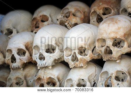 Human Skulls At The Killing Fields In Cambodia