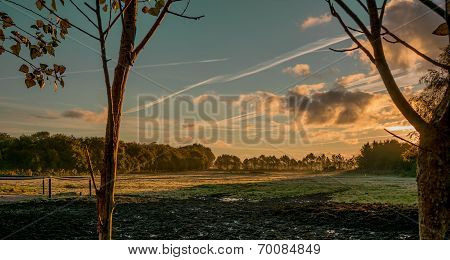 Landscape with field and sky on sunset