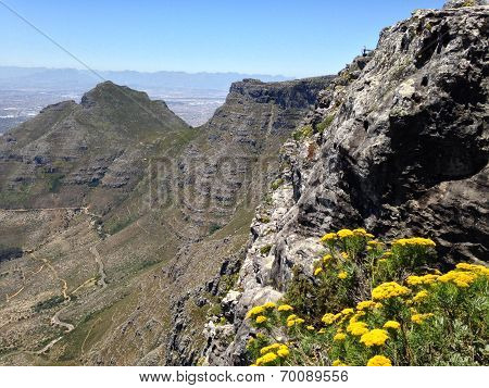 Side of Table Mountain