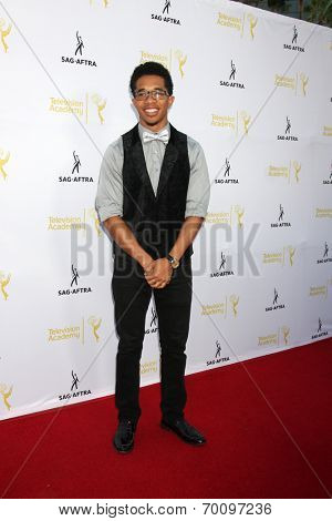 LOS ANGELES - AUG 12:  Gary LeRoi Gray at the Dynamic & Diverse:  A 66th Emmy Awards Celebration of Diversity Event at Television Academy on August 12, 2014 in North Hollywood, CA