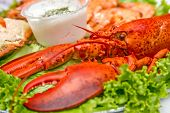 pic of catering  - Catering table with lobster salad crab cameroon and sauce - JPG