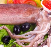 foto of pinky  - Raw squid with vegetables and red caviar on the white background - JPG