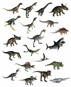 foto of pterodactyl  - Set of dinosaurs in white background  - JPG