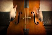 foto of double-bass  - Close - JPG