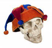 picture of joker  - Skull wearing joker cap of many different colors  - JPG