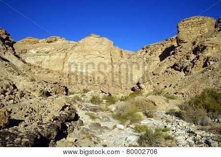 Negev Desert And Mountain