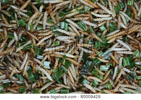 Bamboo Caterpillar Or Express Worm Fried
