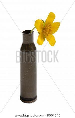 Flower In Bullet