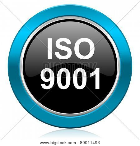 iso 9001 glossy icon