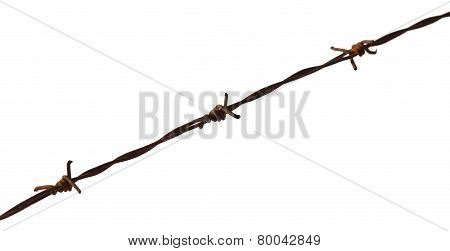 Rusty Barbed Wire And White Background